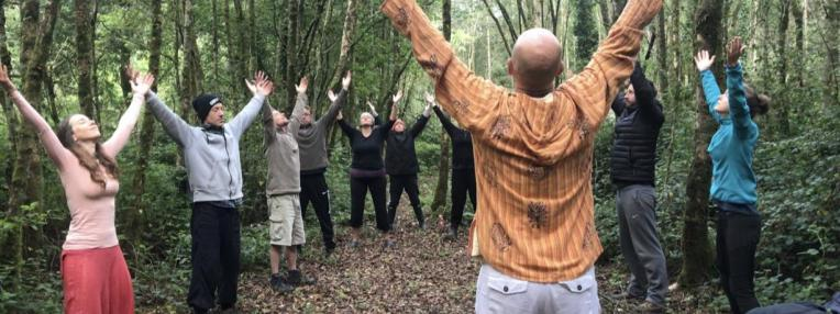 Qigong in the woods